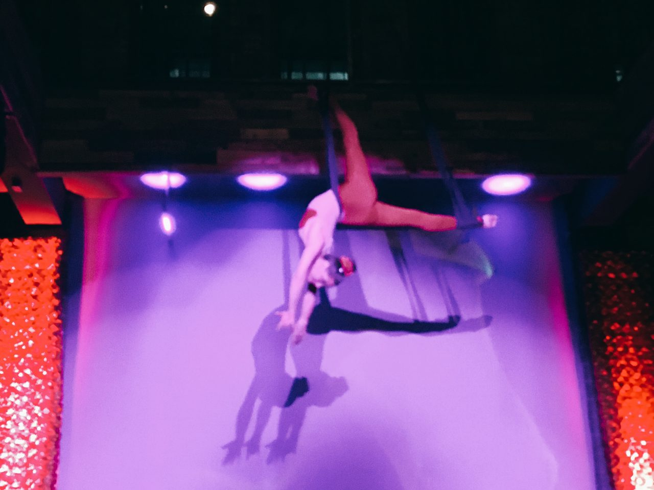 Don't Tell Supper Club - Downtown Dallas - Aerial Acrobatics - Aerial Dancers